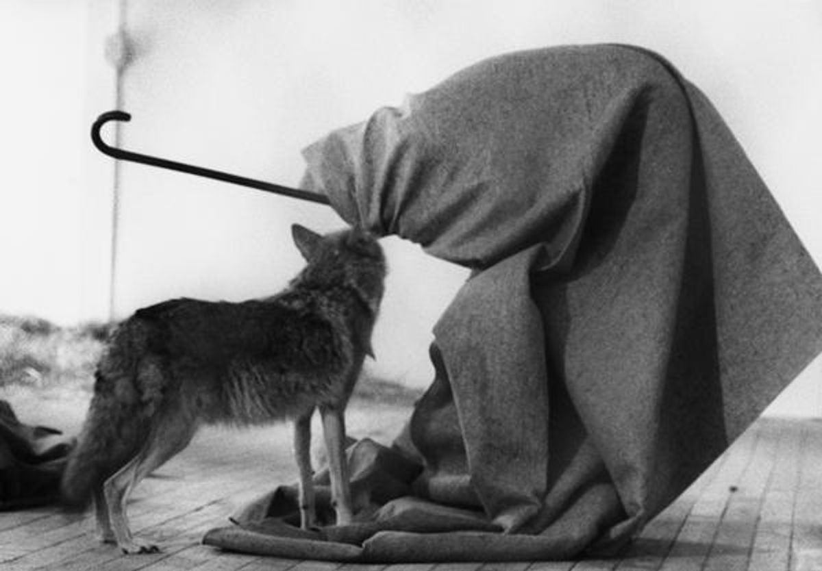 Stories of Iconic Artworks: Joseph Beuys' I Like America and America Likes Me