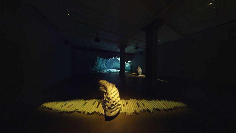 Towards No Earthly Pole by Julian Charrière, Sean Kelly Gallery (2 of 4)