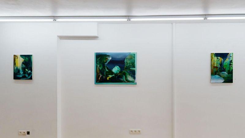Verge by Jan Valik, Husk Gallery (7 of 9)