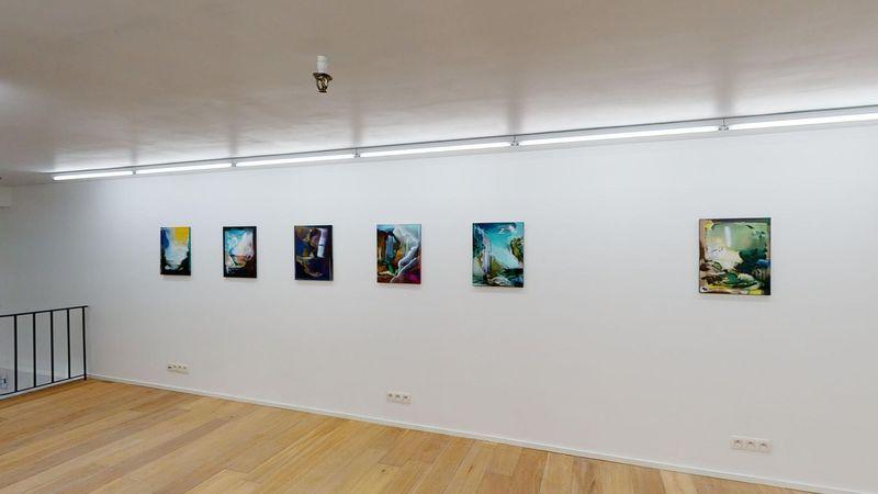 Verge by Jan Valik, Husk Gallery (8 of 9)