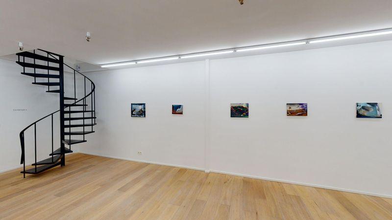 Verge by Jan Valik, Husk Gallery (9 of 9)