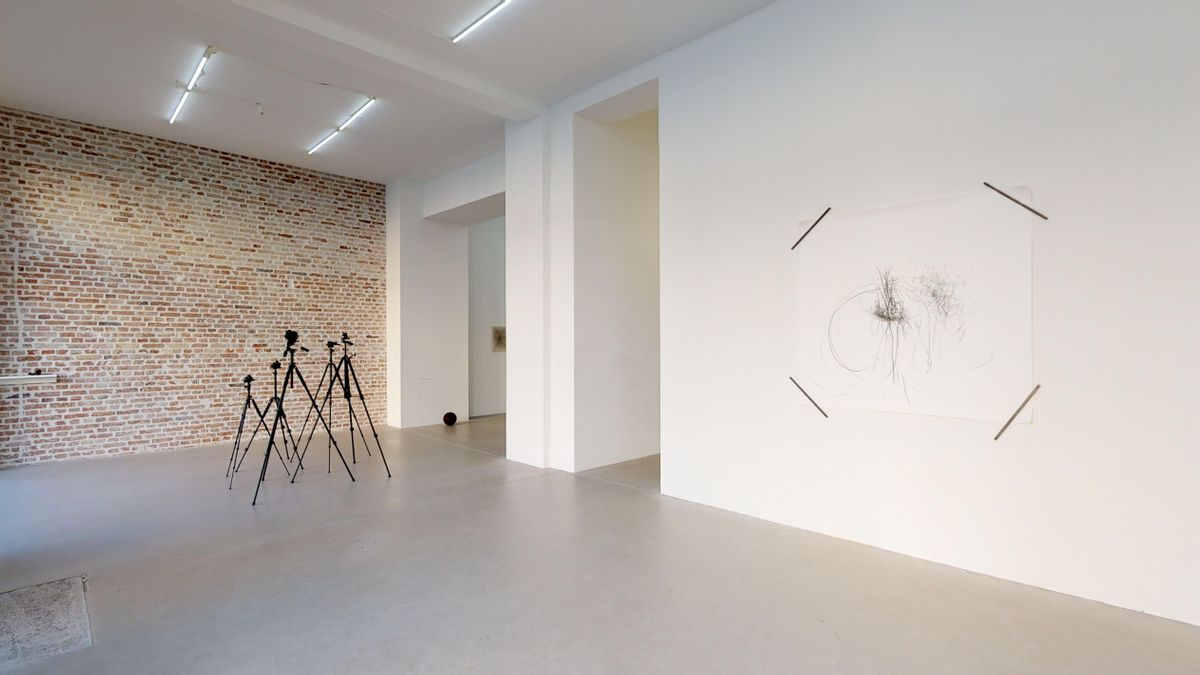 FEMALE REBOUNDS — NOT SO A WHITE CUBE #14