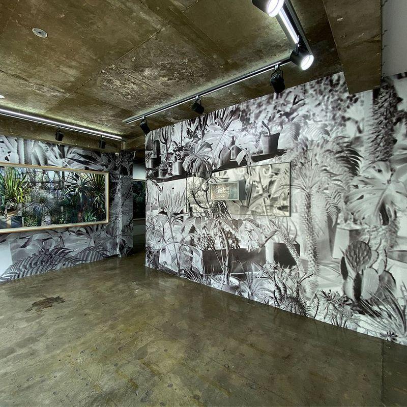 Gallery Suiha