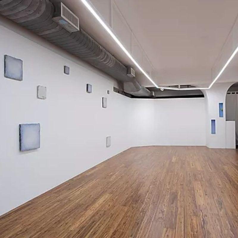 Ki Smith Gallery