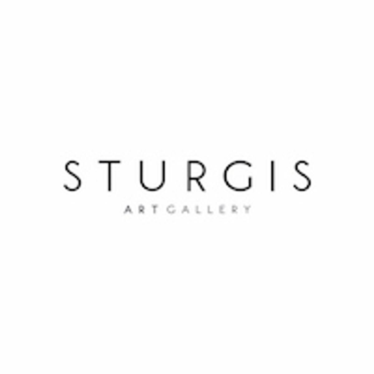 Sturgis Art Gallery